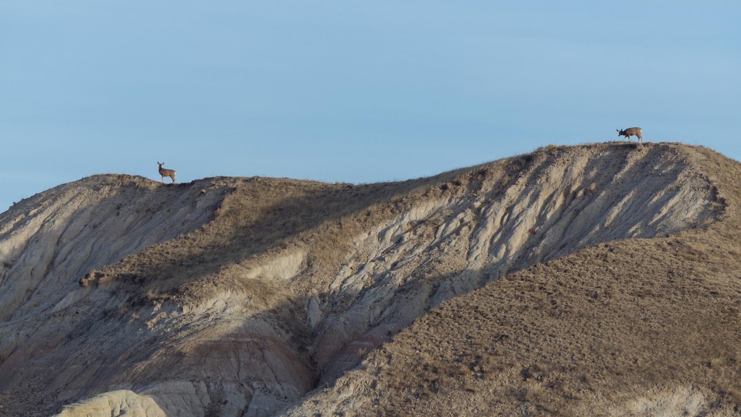 BadlandsWeb-24.jpg