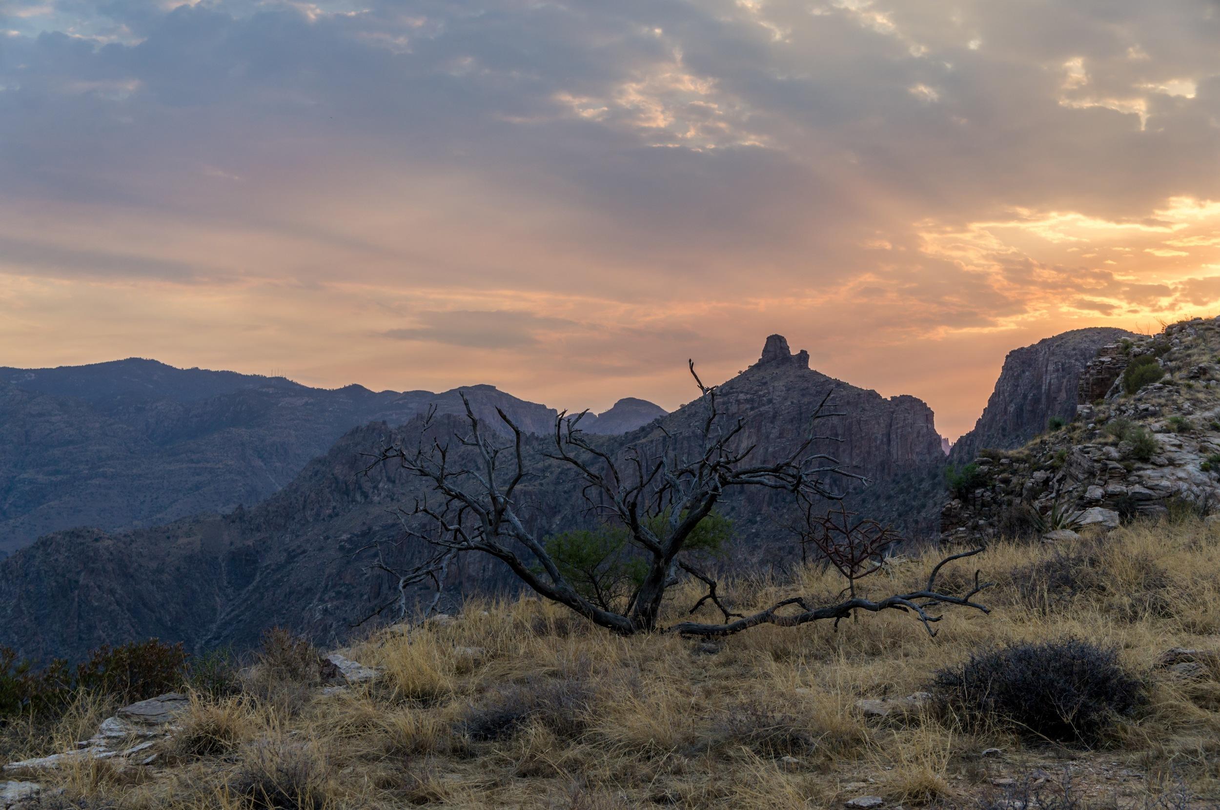 Blacketts Sunrise Edits - 19.jpg