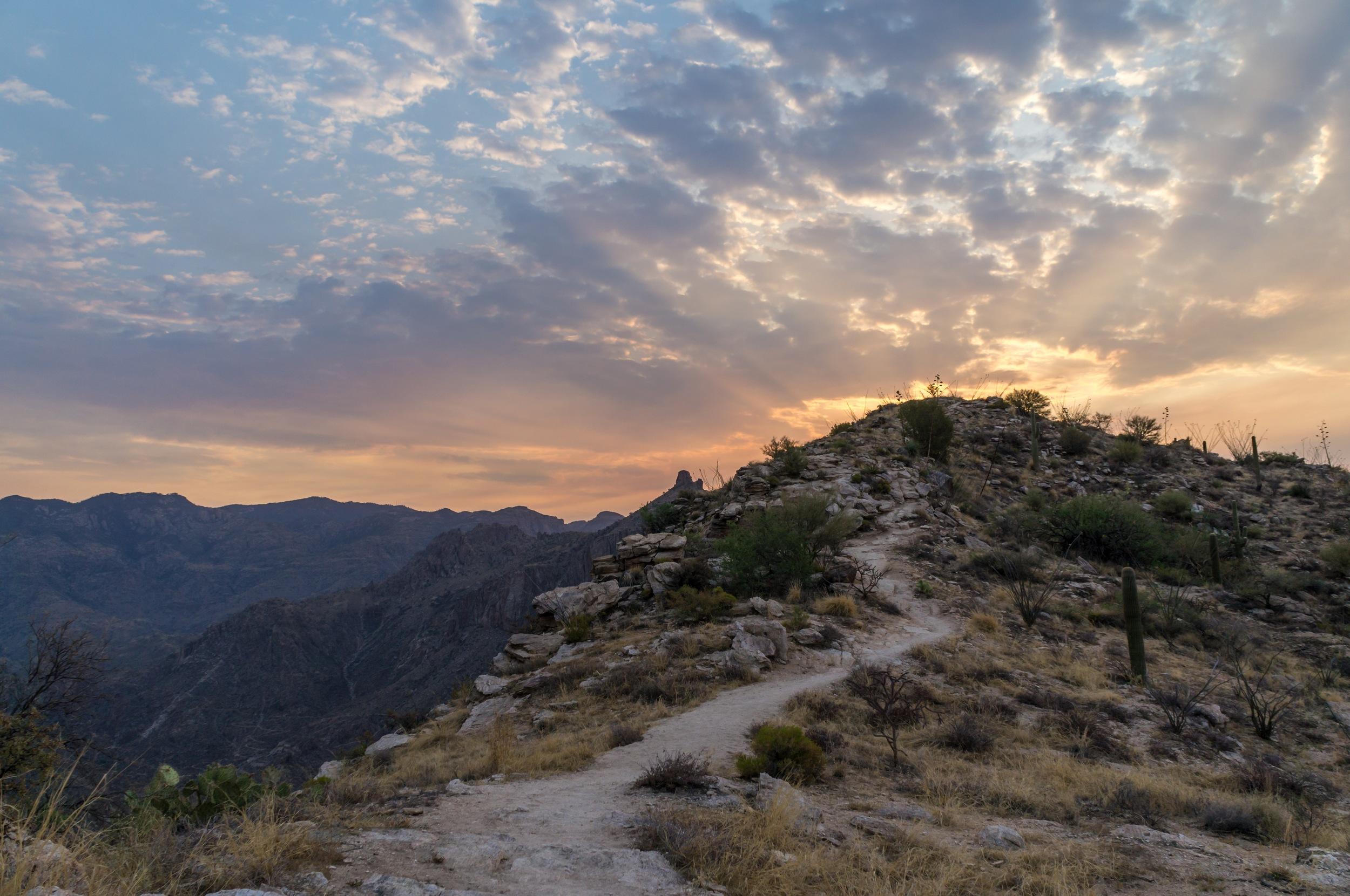Blacketts Sunrise Edits - 22.jpg