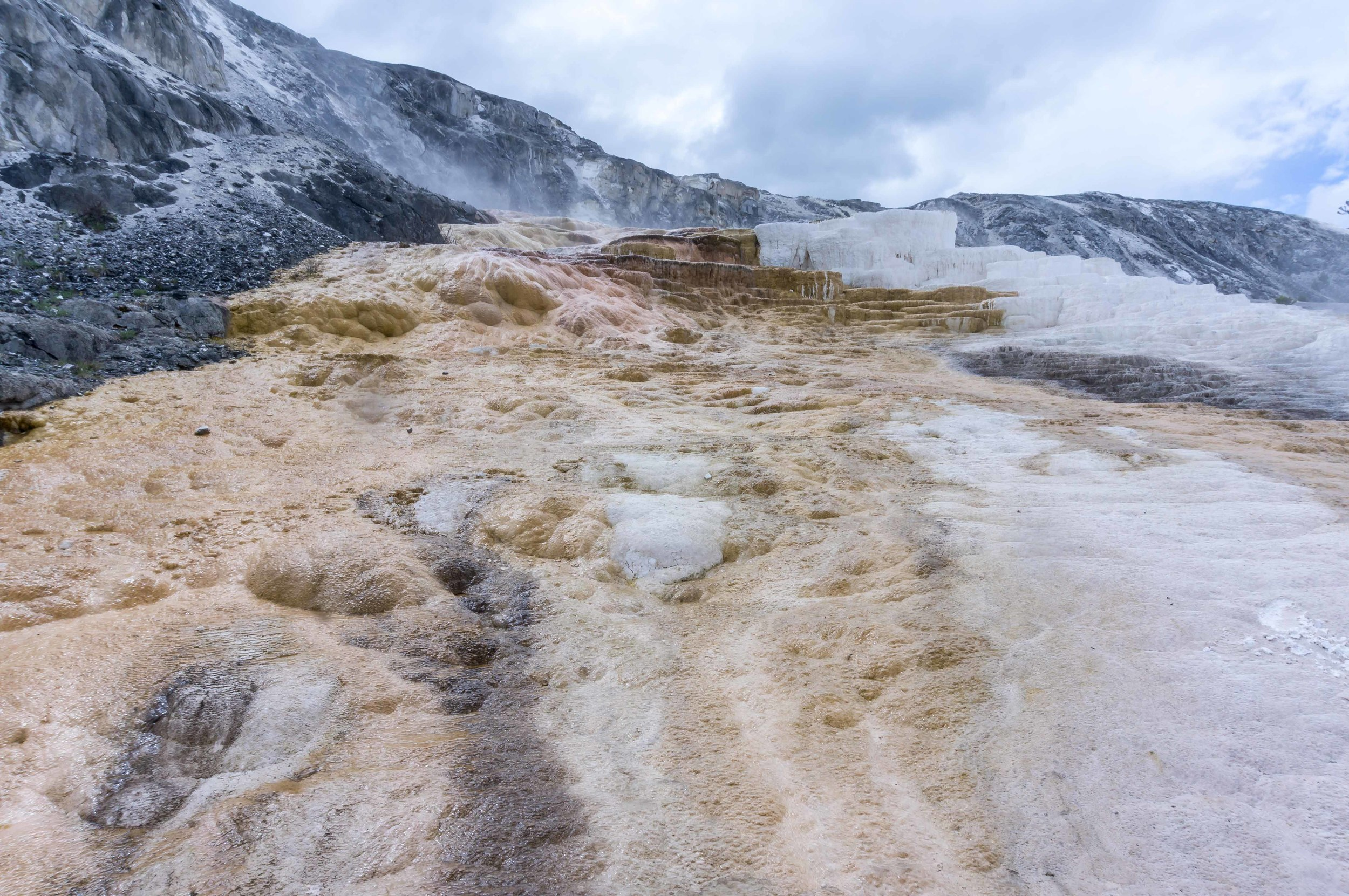 MammothHotSprings10