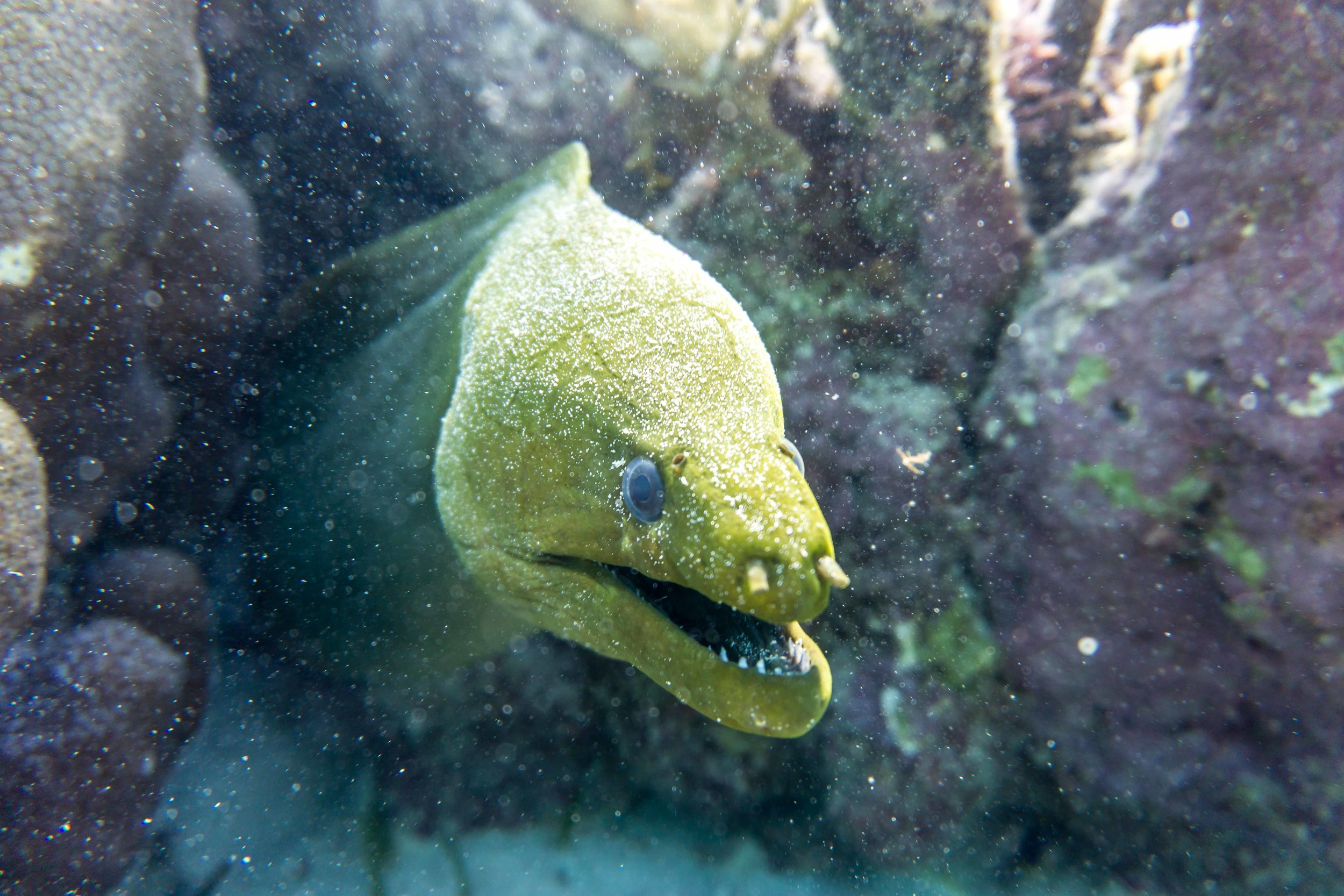 Belize-73.jpg