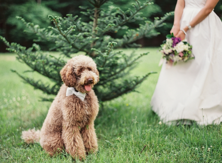 Vicki Grafton Photography Fine Art Film - Destination wedding photographer -039.jpg