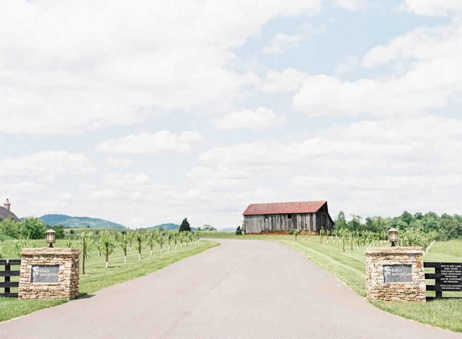 Virginia Fine Art Film Wedding Photographer  | Early Mountain Vineyard Wedding | Entrance