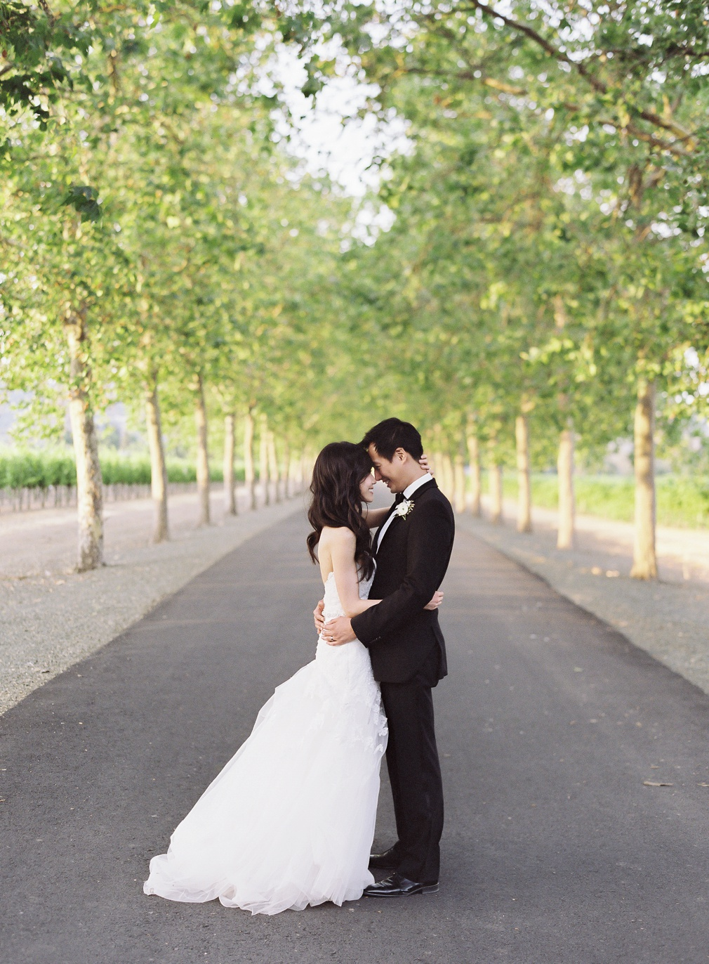 Vicki_Grafton_Photography_beaulieu_gardens+6-24-17-898.JPG