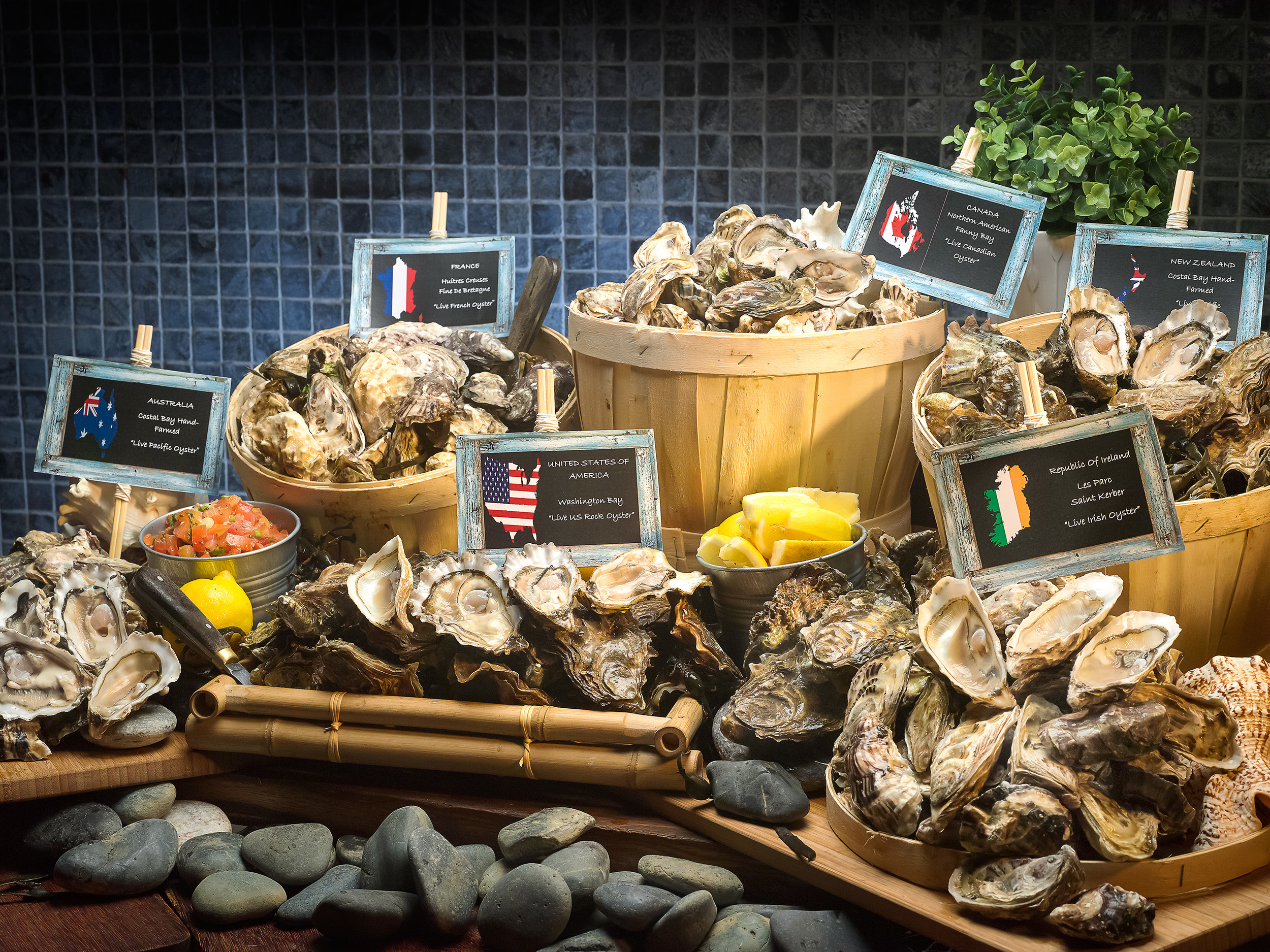 Oyster Occasions at Pan Pacific Orchard