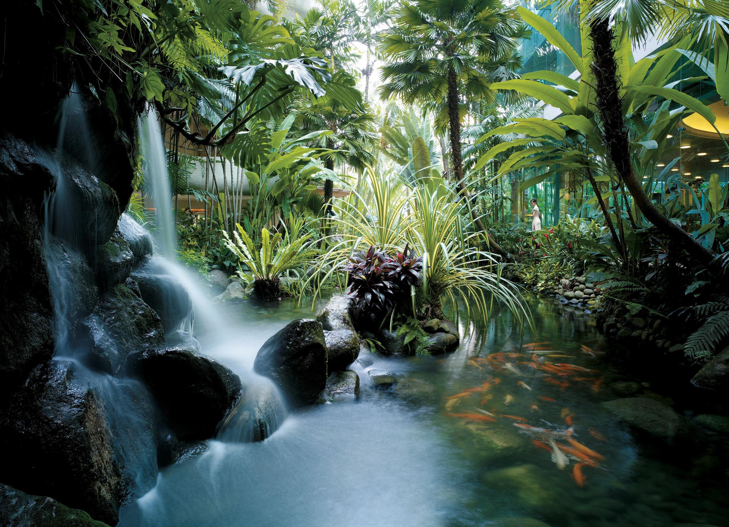 Koi Pond at The Waterfall | Photo Credit: Shangri-La Hotel, Singapore