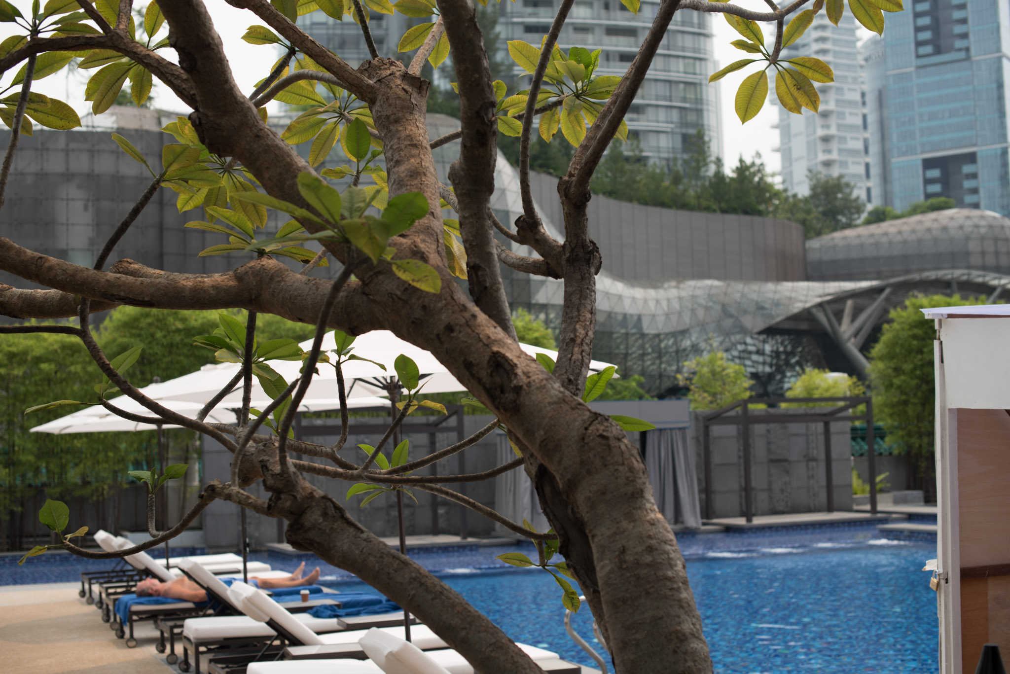 View of the Swimming Pool  Pool Grill - Singapore Marriott Tang Plaza Hotel