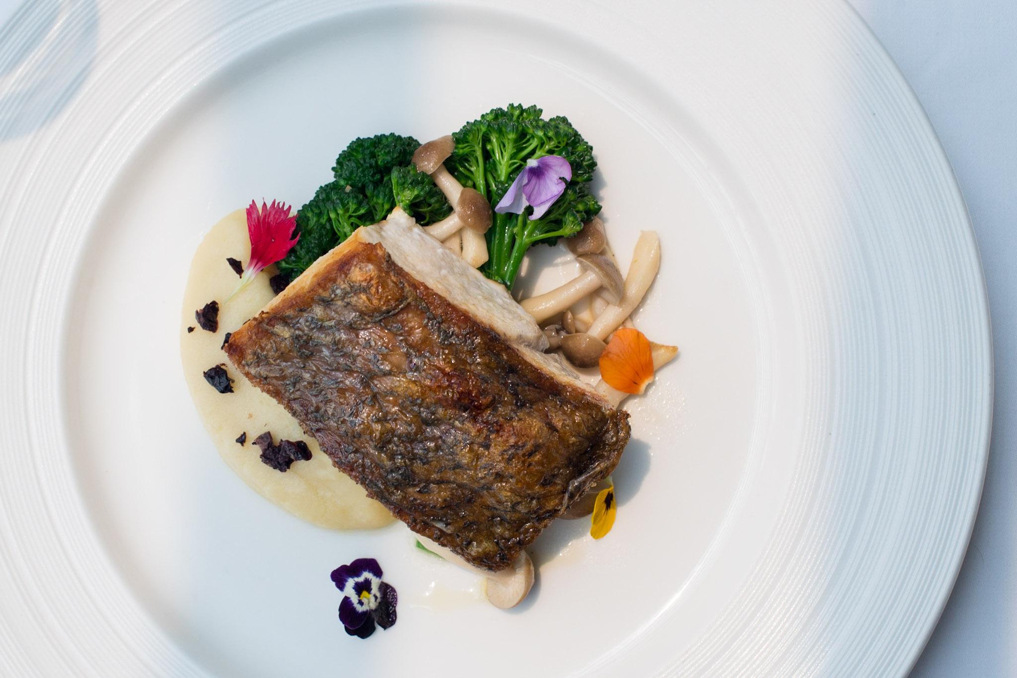 Pan-fried Seabass, Broccollini, Shimeji, Mash, Parsley, Black Olive  Pool Grill - Singapore Marriott Tang Plaza Hotel
