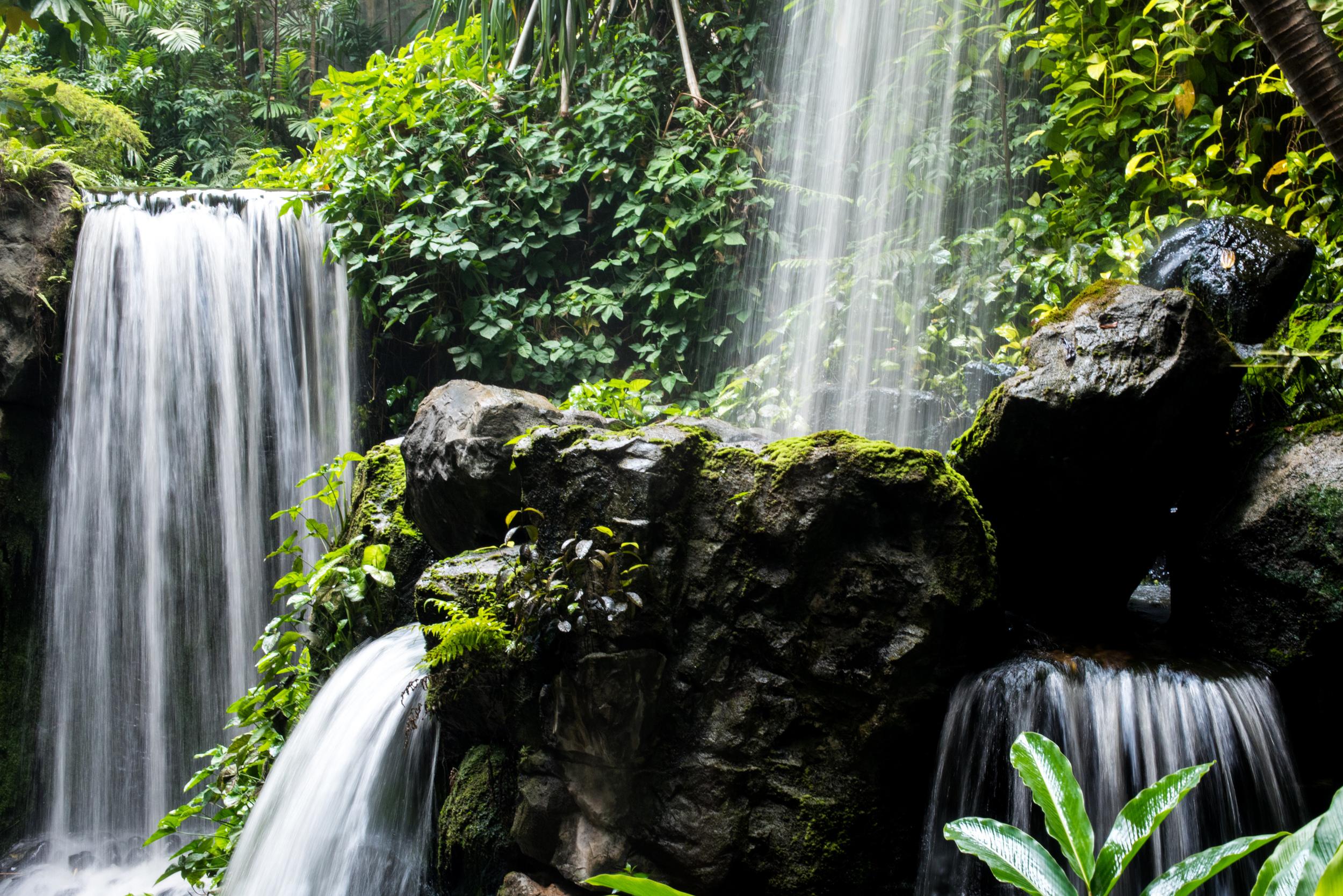 The Waterfall  Grand Hyatt Singapore