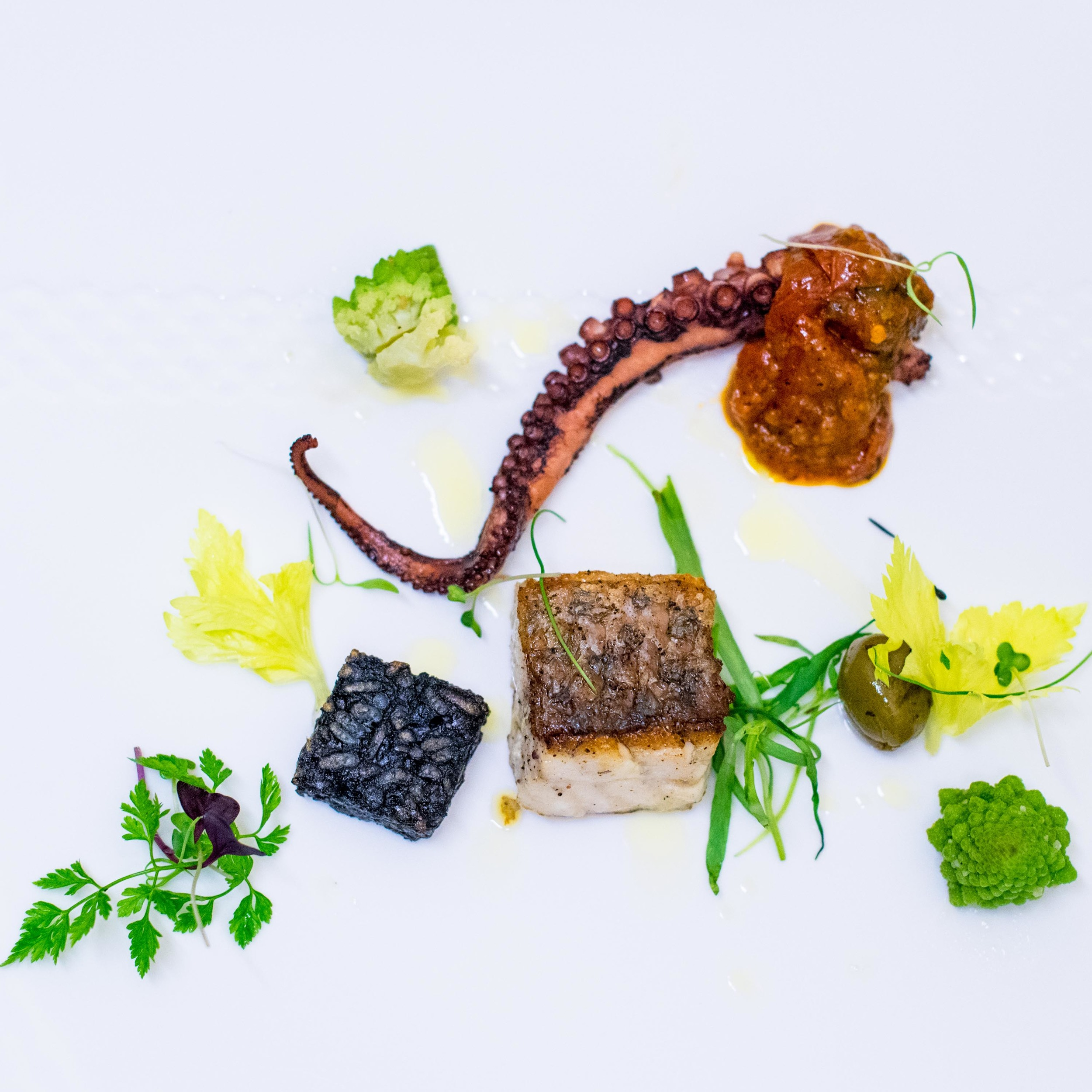 Grilled Sea Bass and Octopus with Crispy Squid Ink Risotto Cake, Roasted Green Olive - 2016 Basilissimo   Basilico - Regent Singapore
