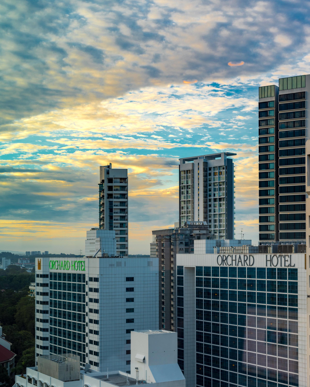 View from Lounge     Executive Lounge - Hilton Singapore