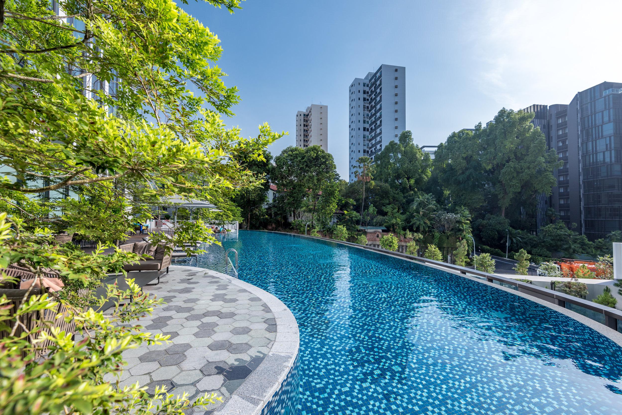 Swimming Pool  Novotel Singapore on Stevens