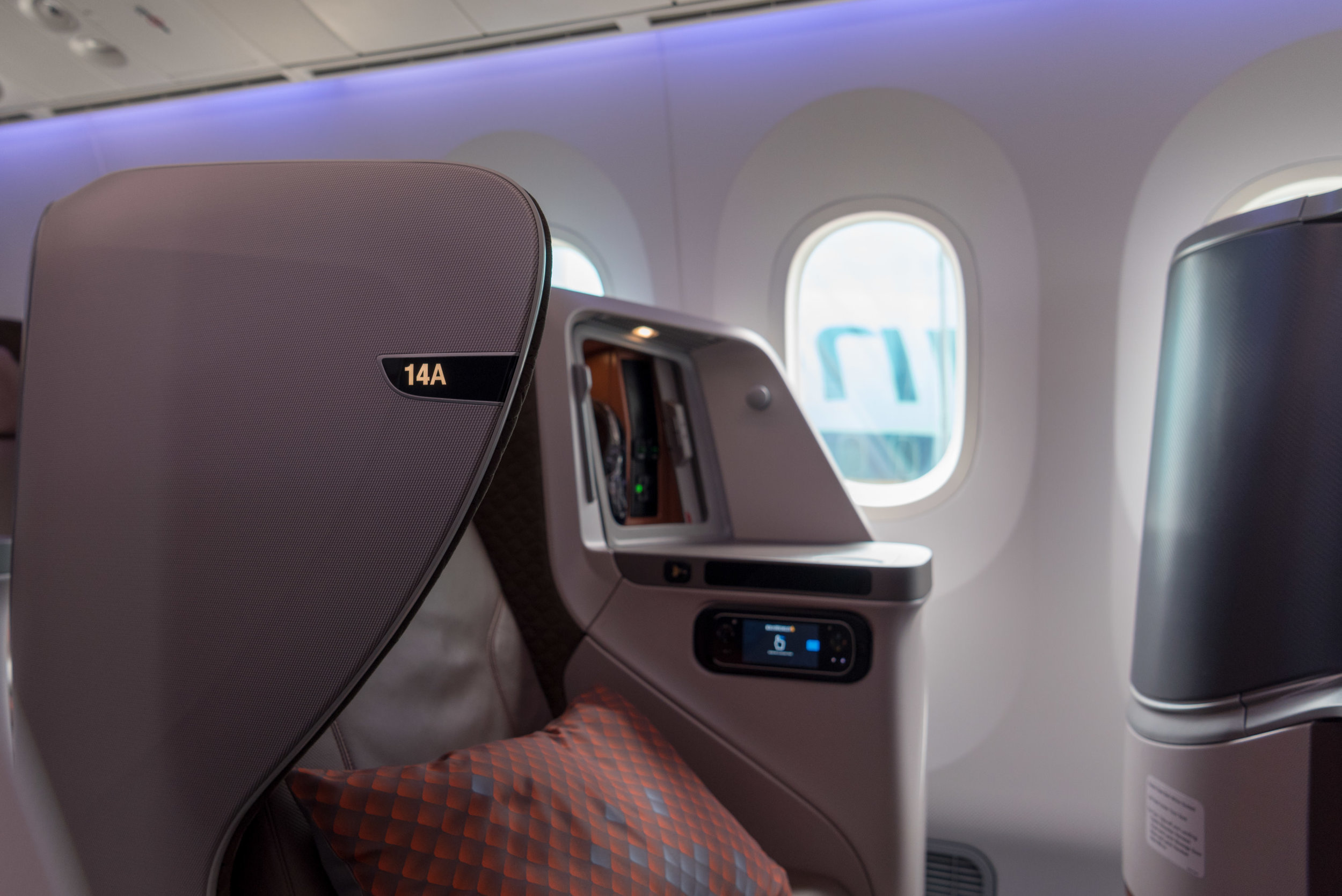 Privacy  New Regional Business Class (2018) - Singapore Airlines