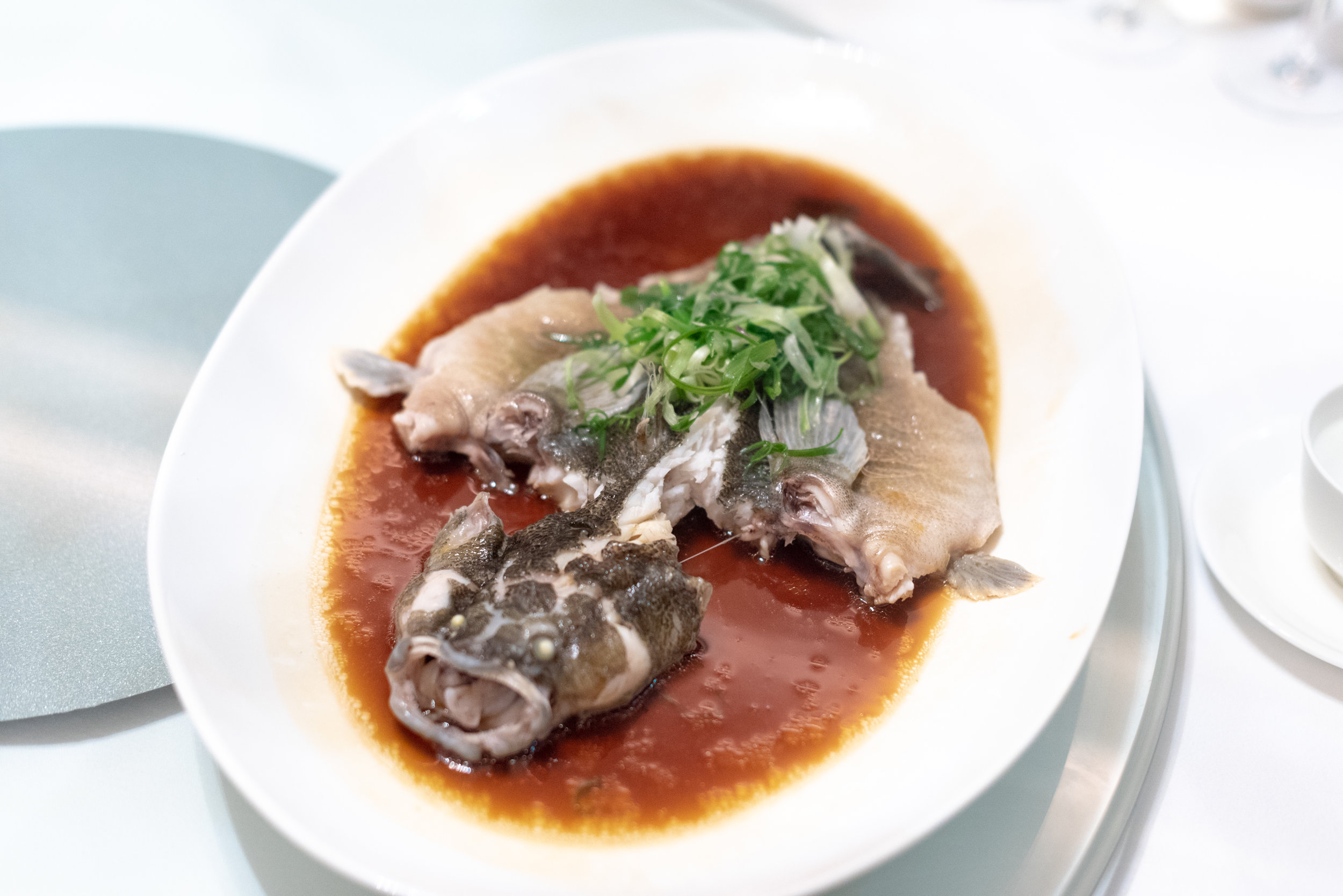 Steamed Soon Hock with Ipoh Soy and Spring Onion (S$14++ per 100g)  Madame Fan - NCO Club at the JW Marriott Singapore South Beach