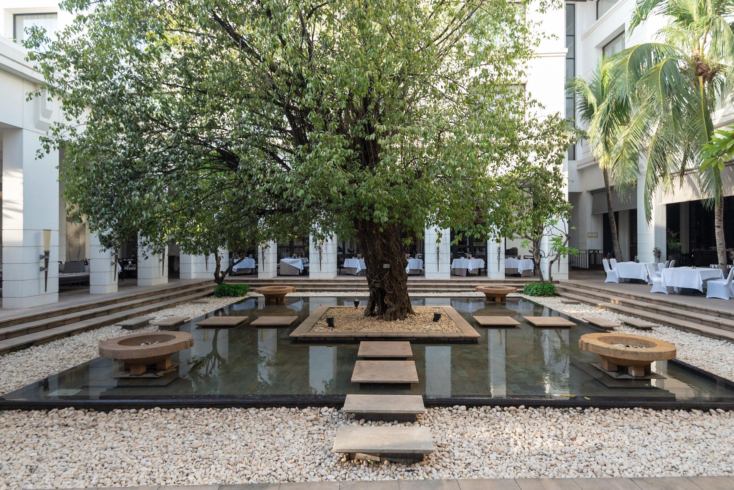 Courtyard with Banyan Tree  Park Hyatt Siem Reap