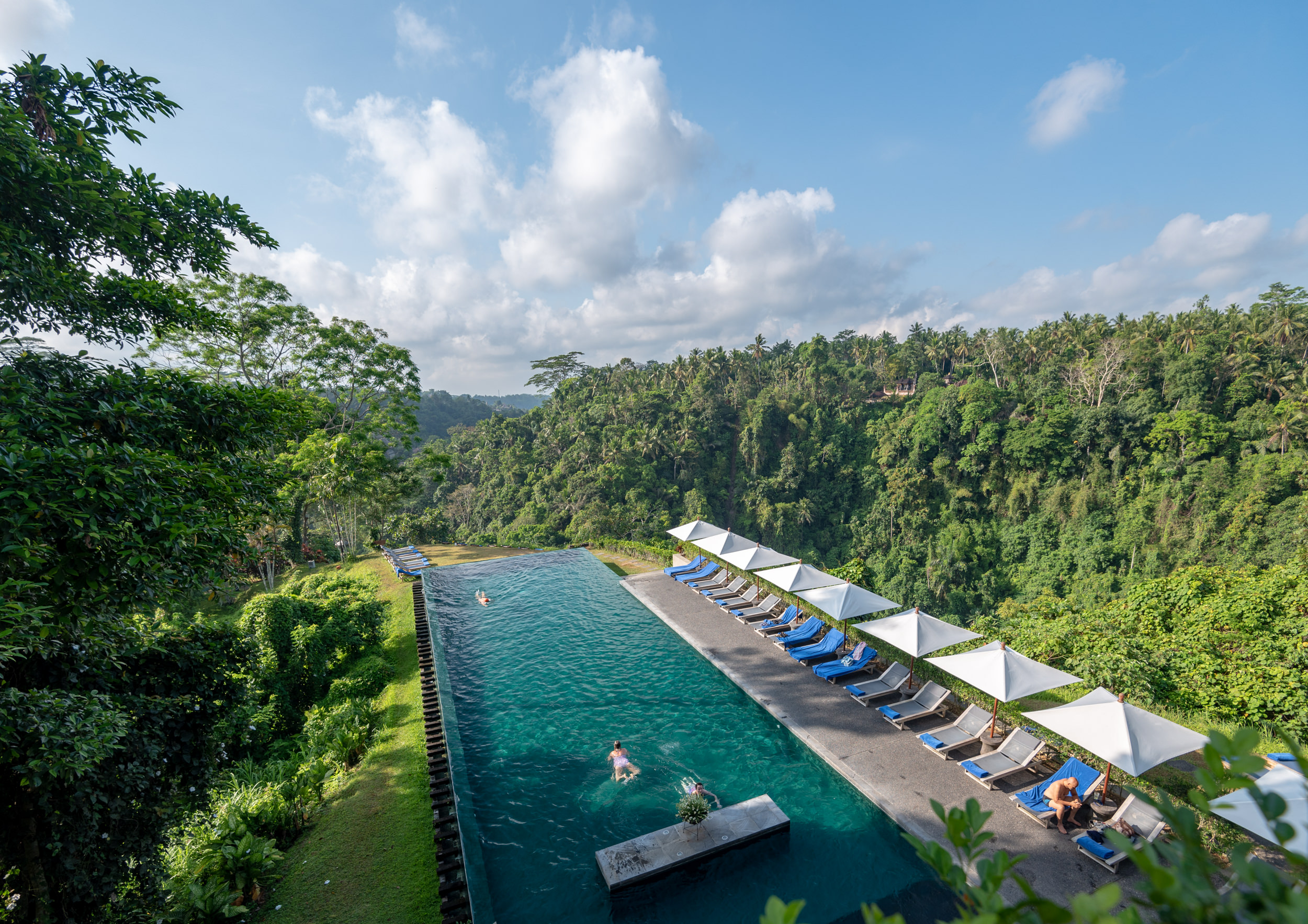 Swimming Pool  Alila Ubud