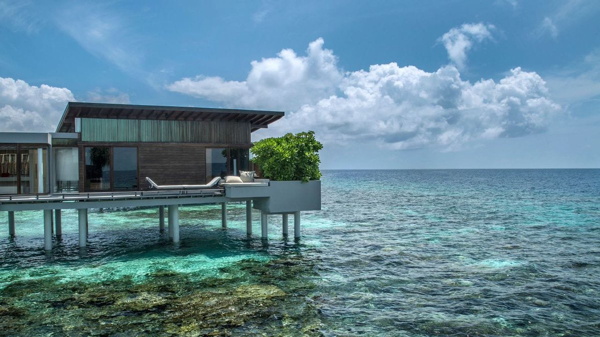 Photo Credit: Park Hyatt Maldives Hadahaa