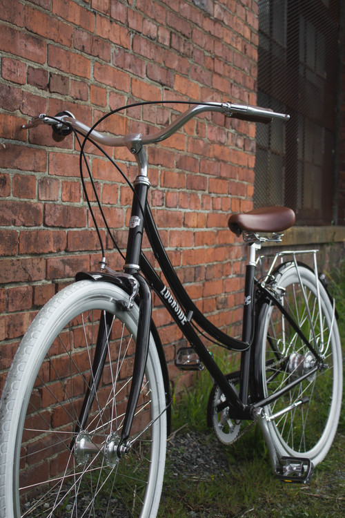 Lochside Cycles Madeline Bike.jpeg