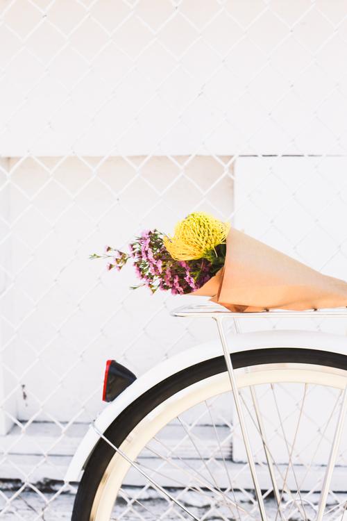 lochside+cycles+spring+bikeride-66.jpg