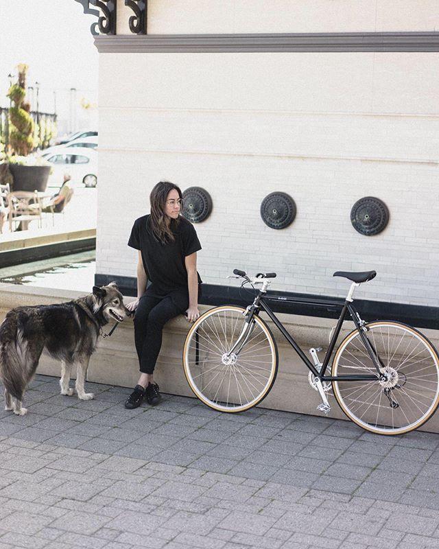 The almost sold out 8-Speed City bike. Ride one before it's gone! 🚲💨 #lochsidecycles #bikestyle #velolove #8speedshimano #shimanoclaris #citybike #urbanbike #baaw #yyj #bikeyyj