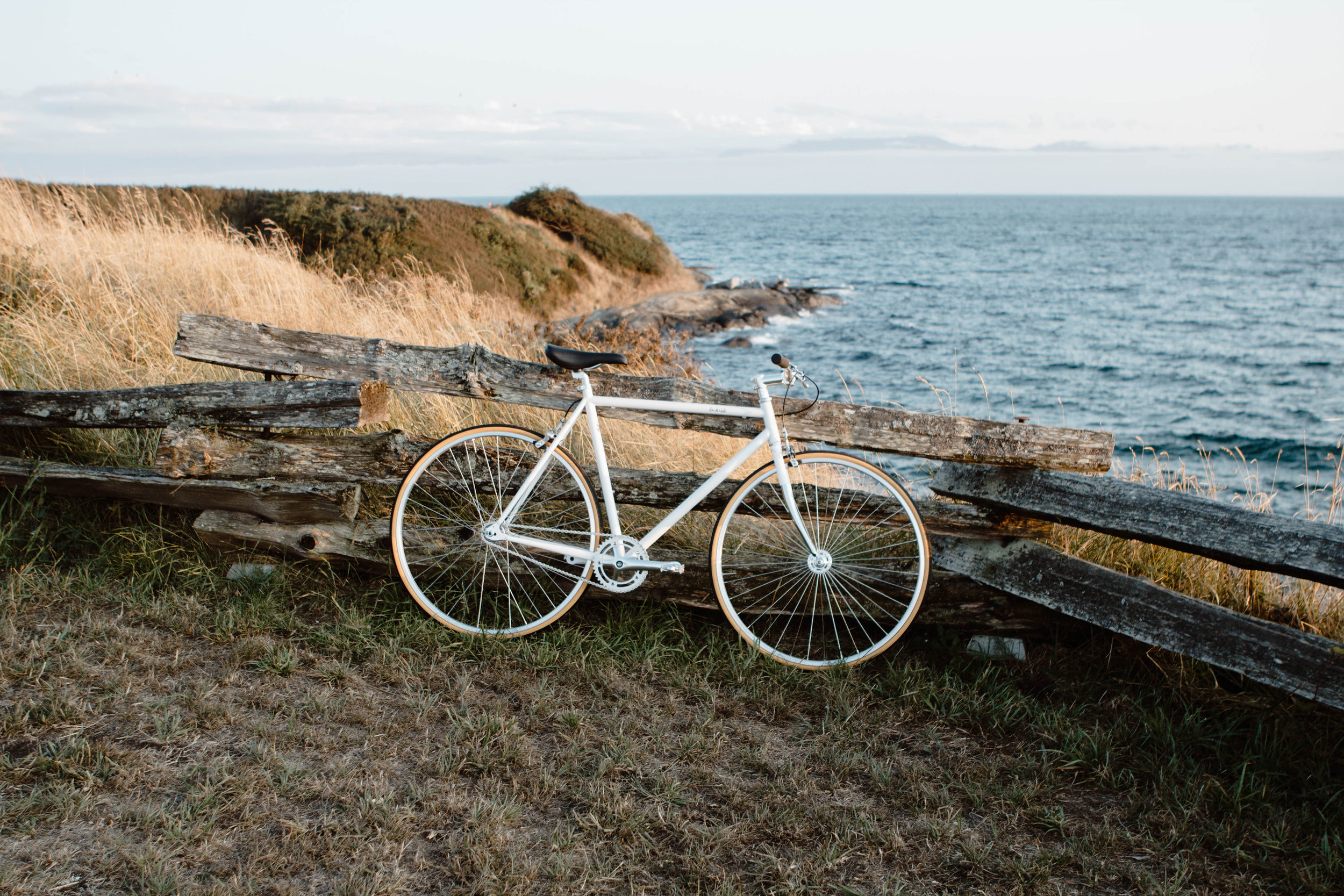 Lochside Cycles Single Speed Fixed Gear City Bike71.jpg