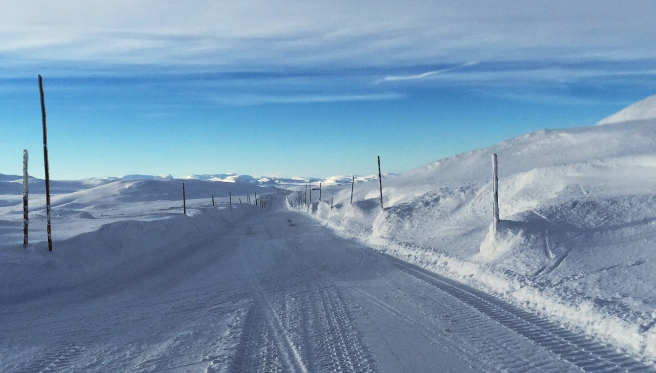 Hardangervidda, March 10th.