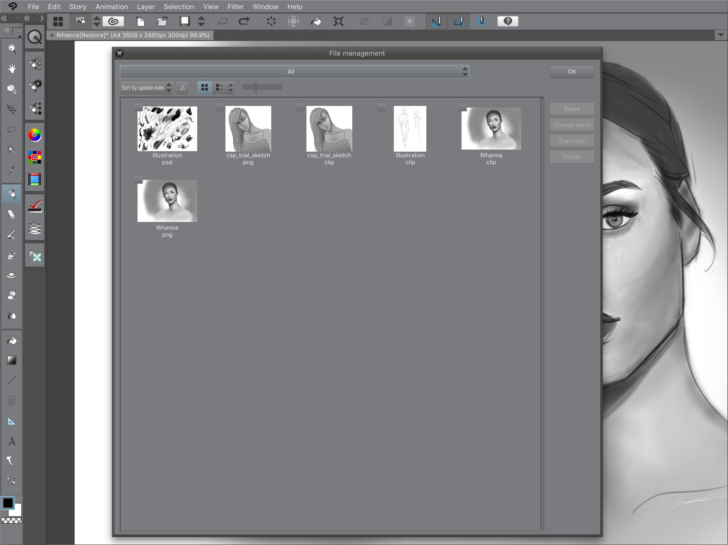 Clip Studio Paint file management system.