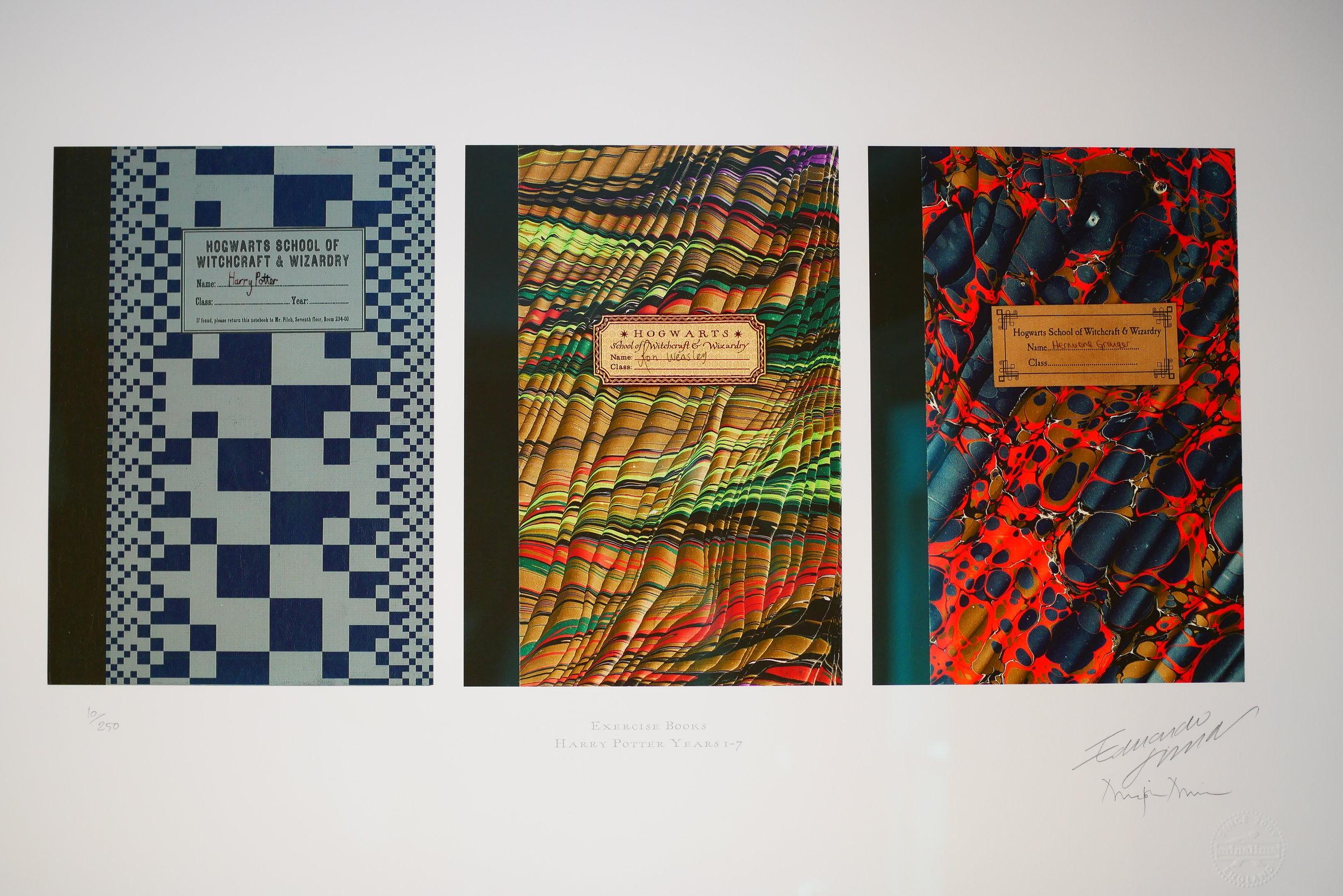 HogwartsBooks.JPG