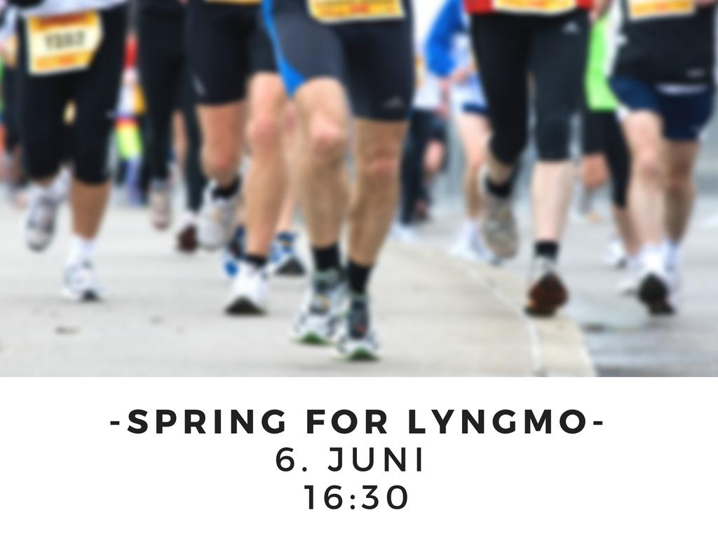 Spring for lyngmo6. juni 16_30.jpg