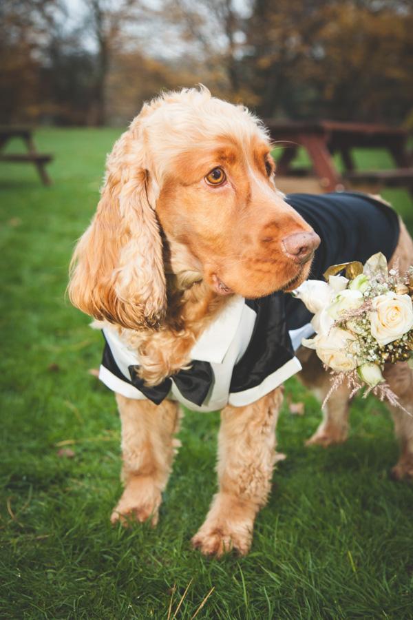 wedding photographer in nottingham 49.JPG