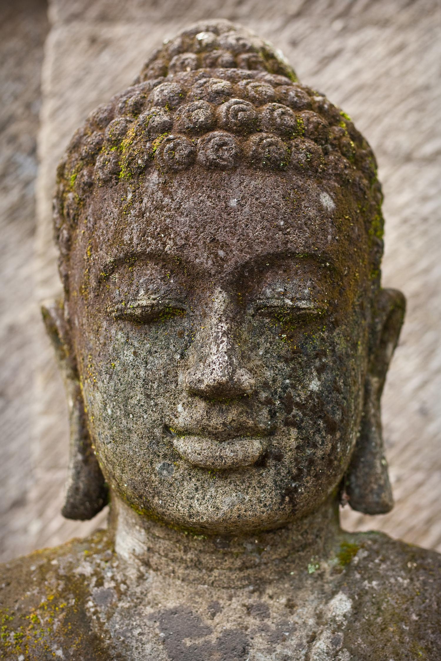 buddhaCard.jpg