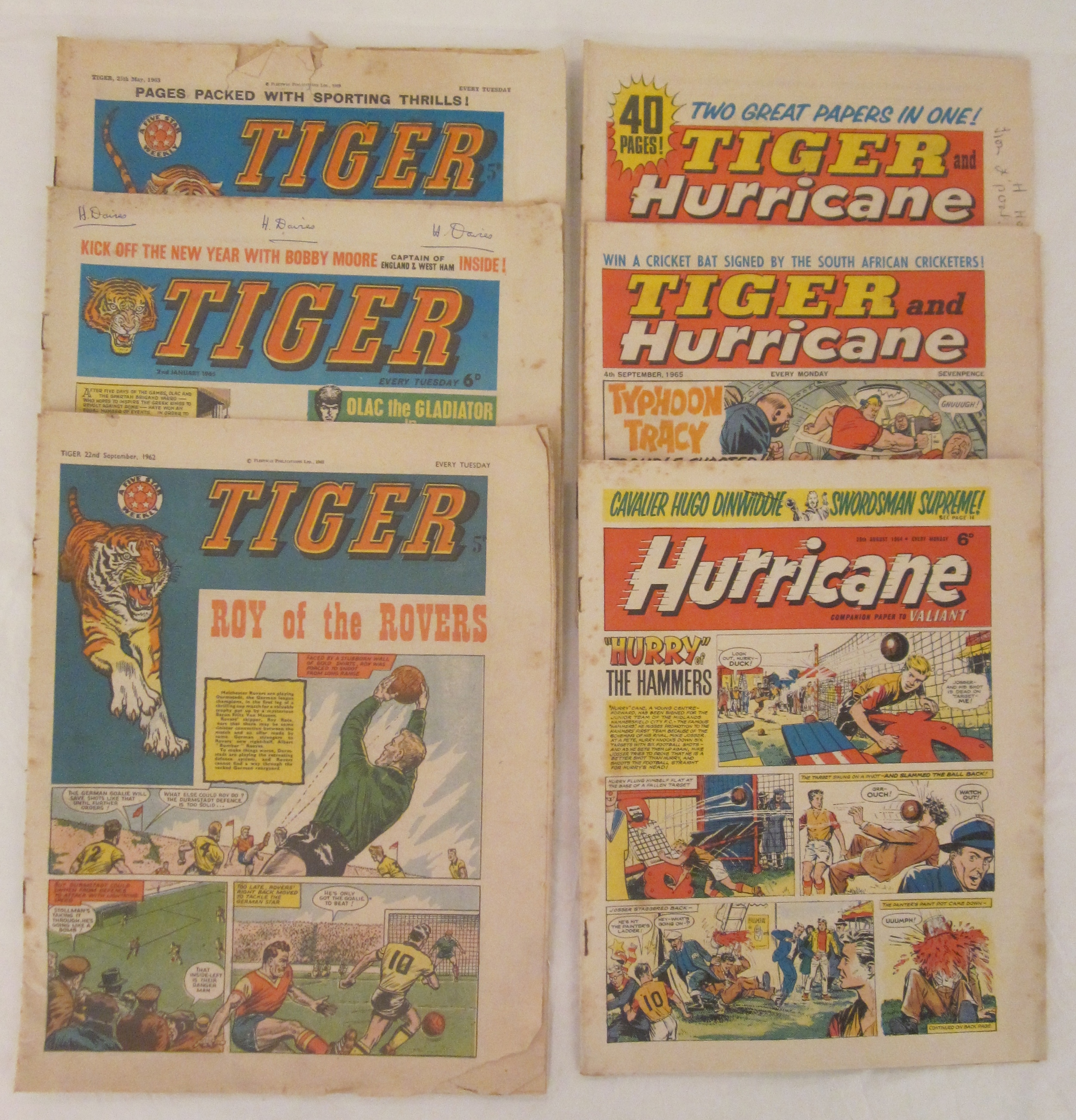 Tiger/Hurricane