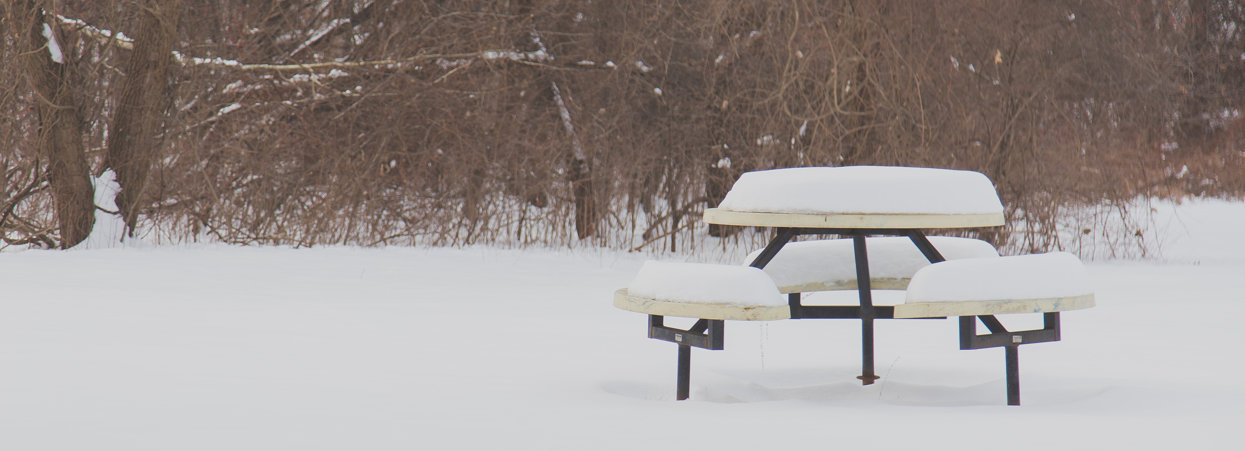 I dragged Erik out to take photos, and wanted to capture this little lonely picnic bench