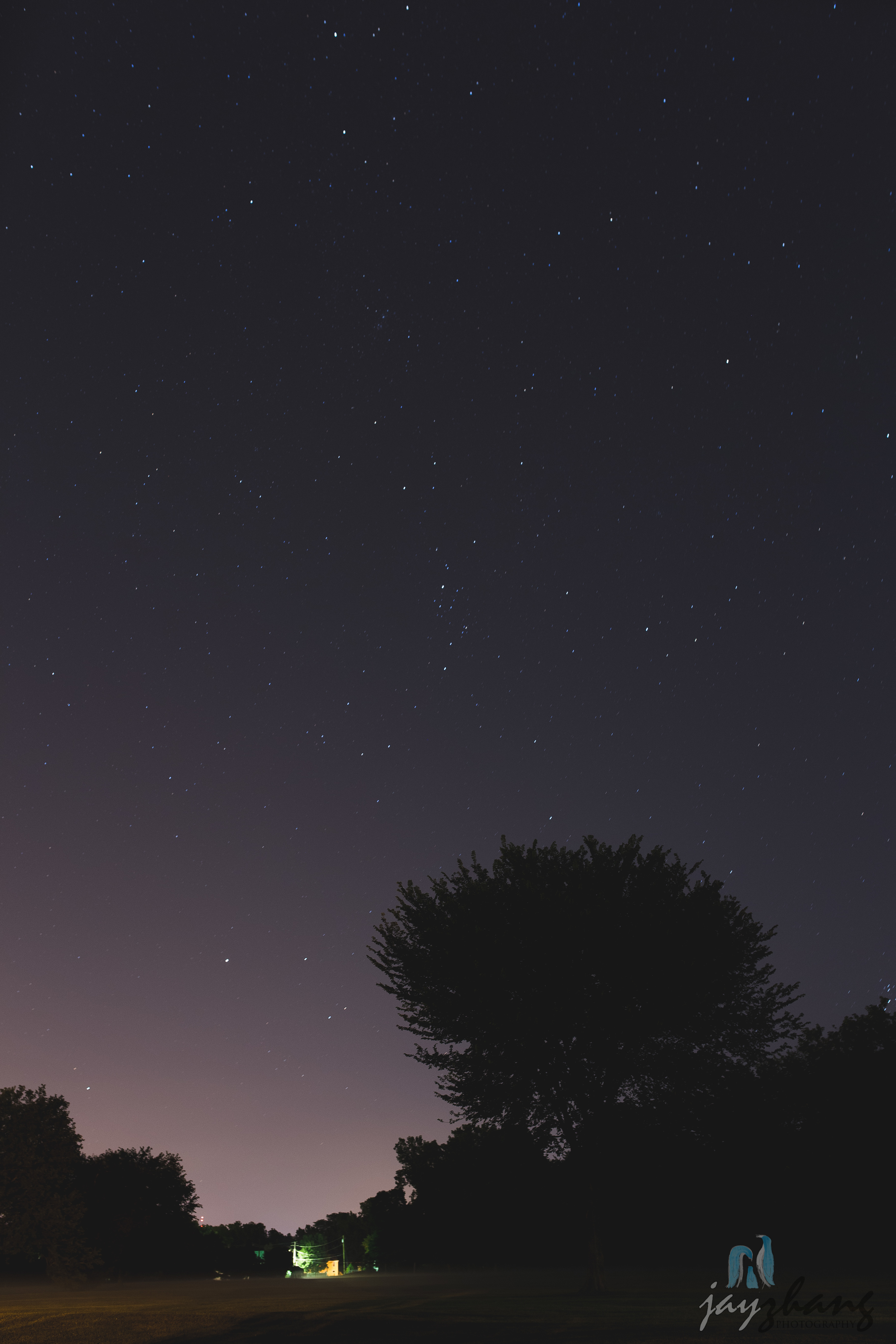 Dat 233 - Night Sky-2.jpg