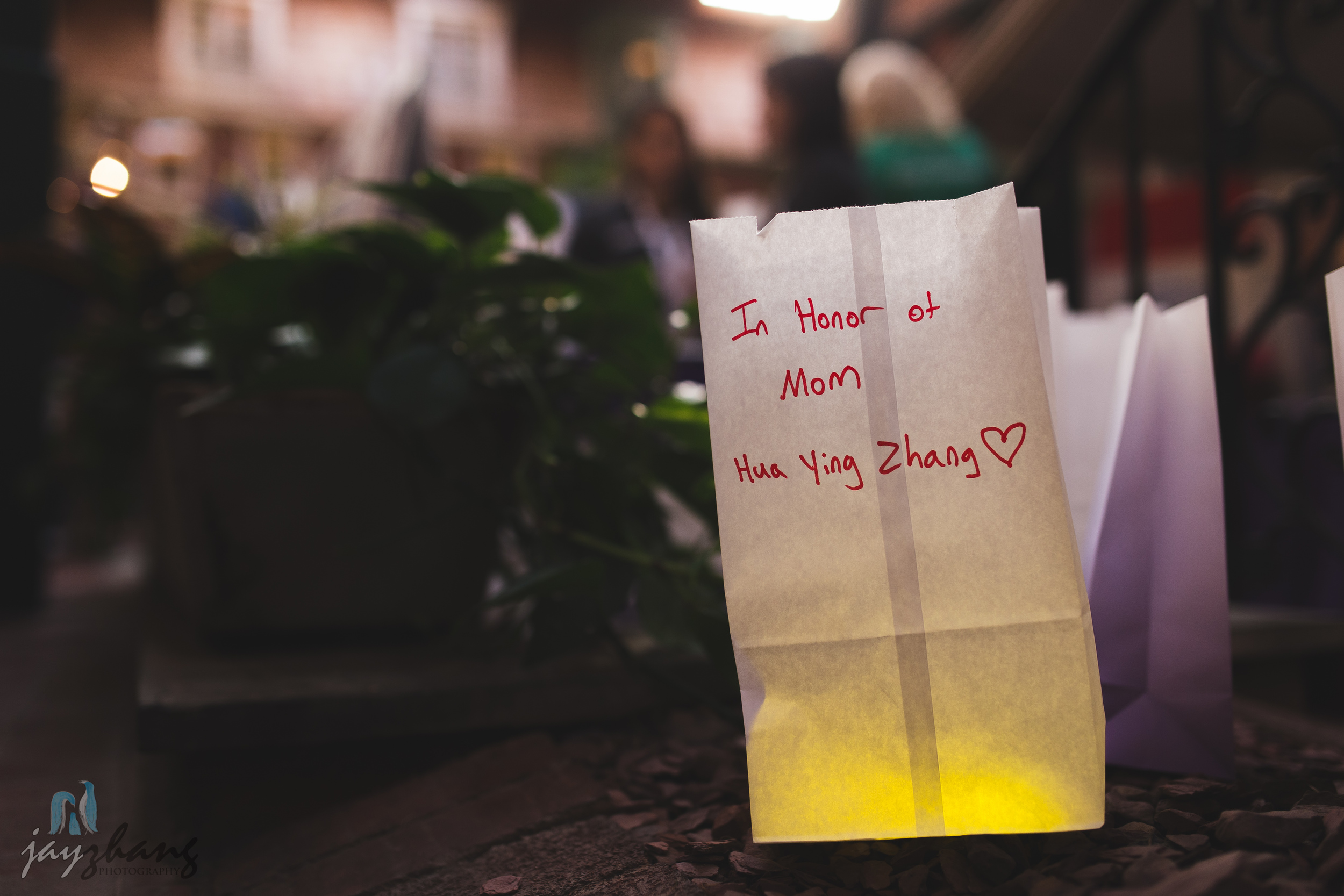 Day 270 - Paper Lantern