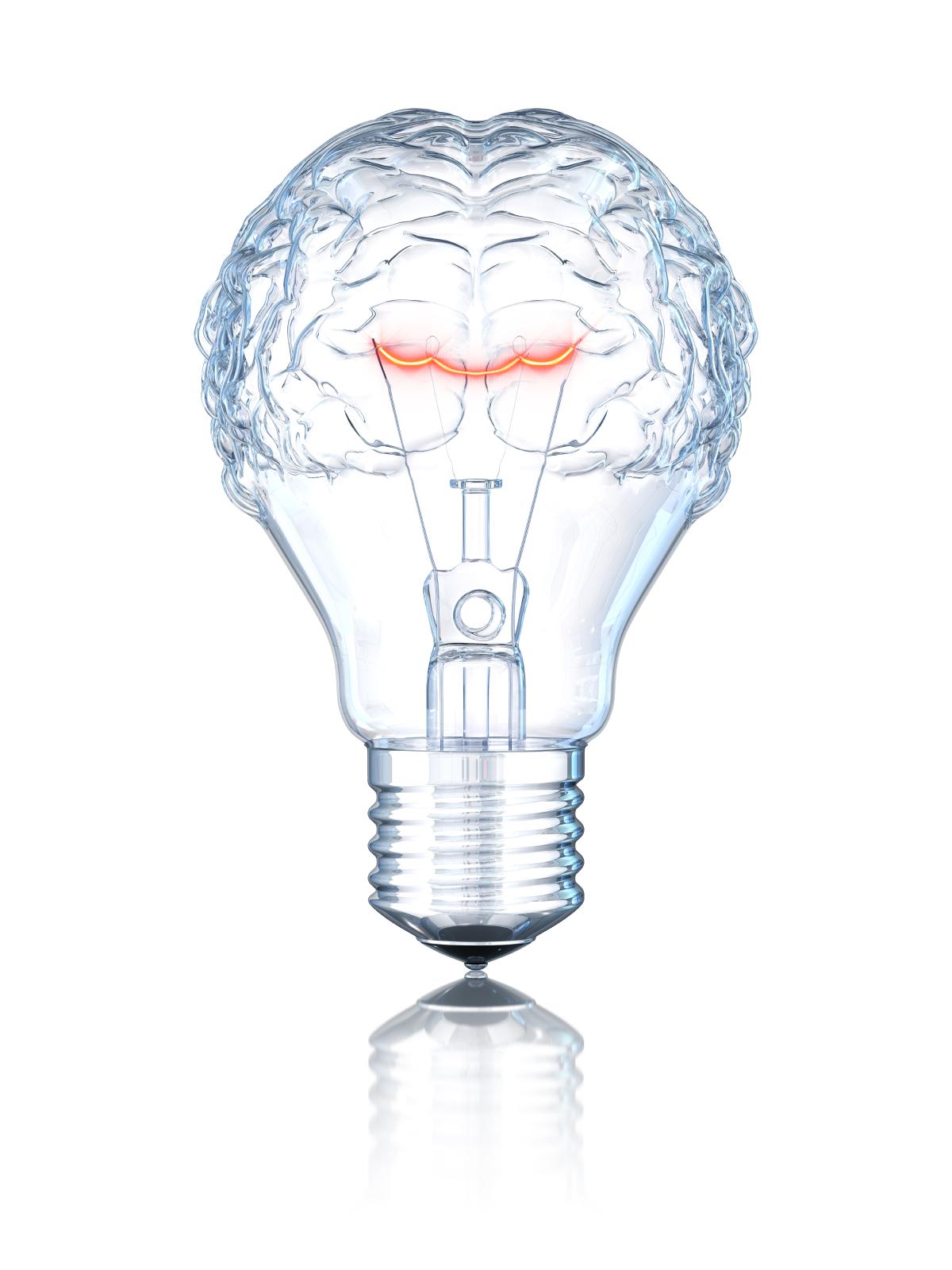 brain with light bulbs iStock_000014421490Small.jpg