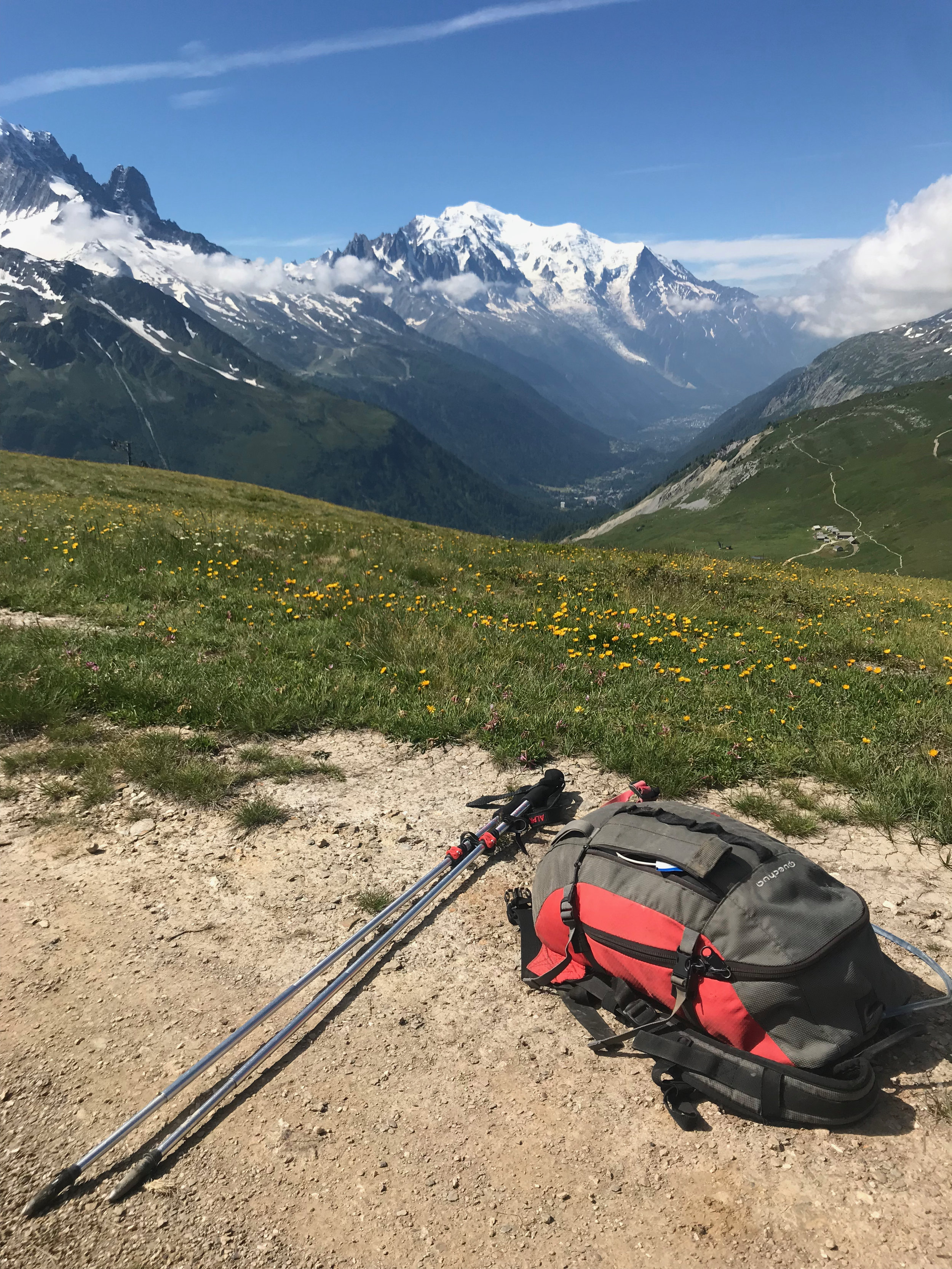 Quechua 20-litre backpack, purchased in  Decathlon . Poles by  Alpkit.com .