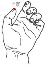 Shi Xuan Points 十宣穴 (the same points are found on the toes)