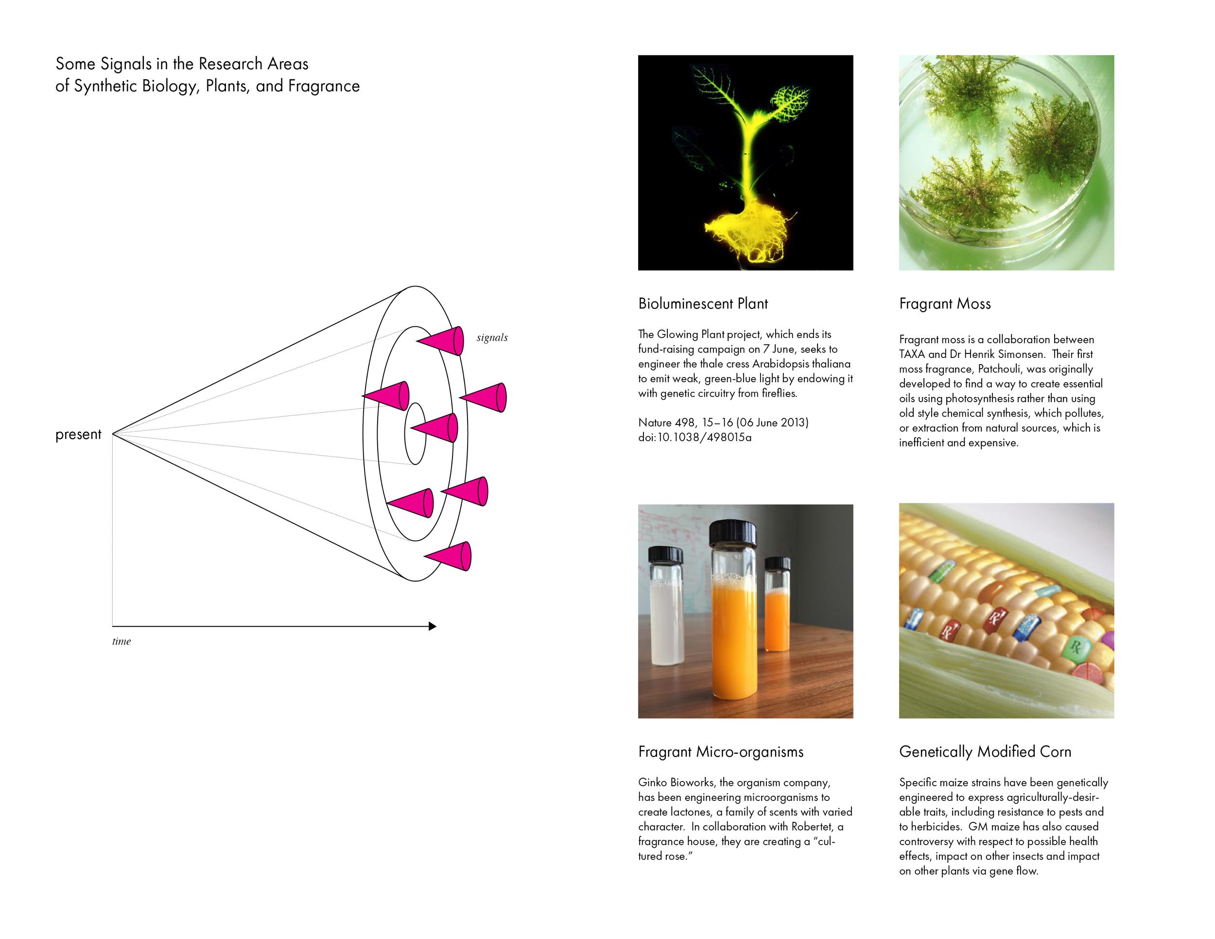 Ani Liu Experimental Art and Olfaction5.png