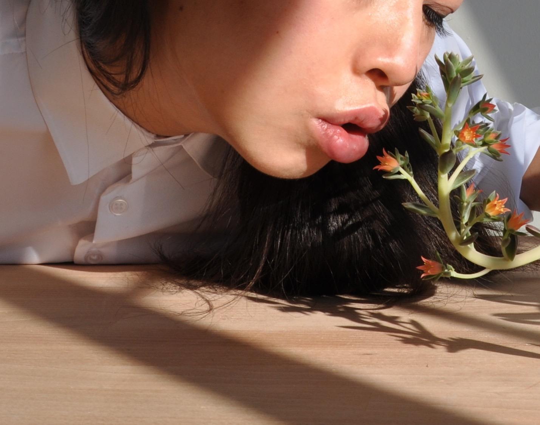 Photograph by Ani Liu