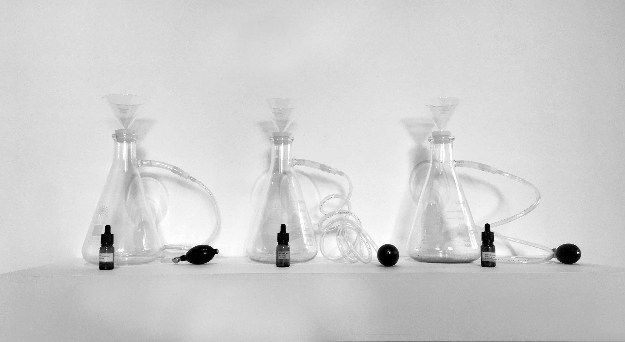 bottles in a row copy.JPG