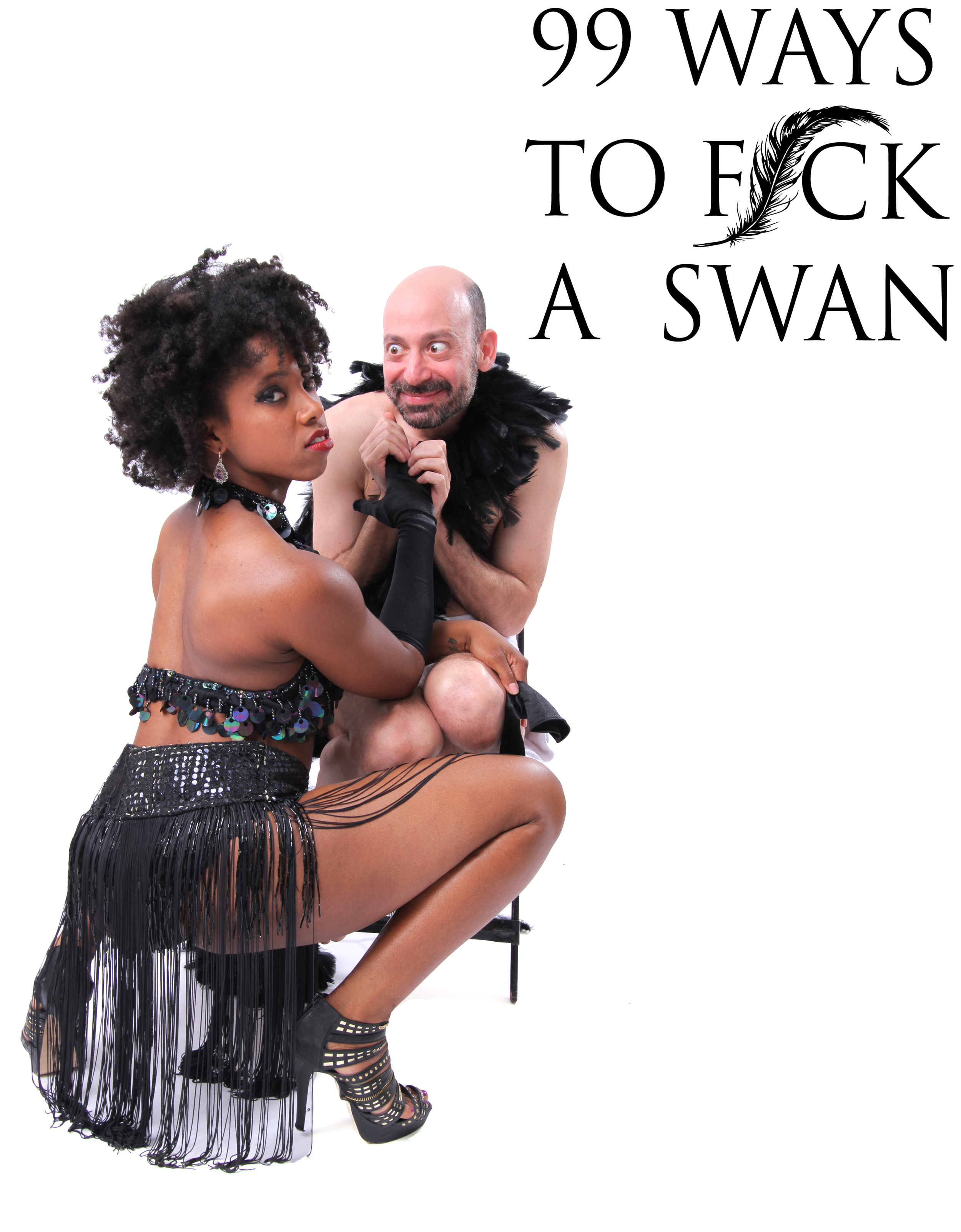 99 Ways to Fuck a Swan promo1.jpg