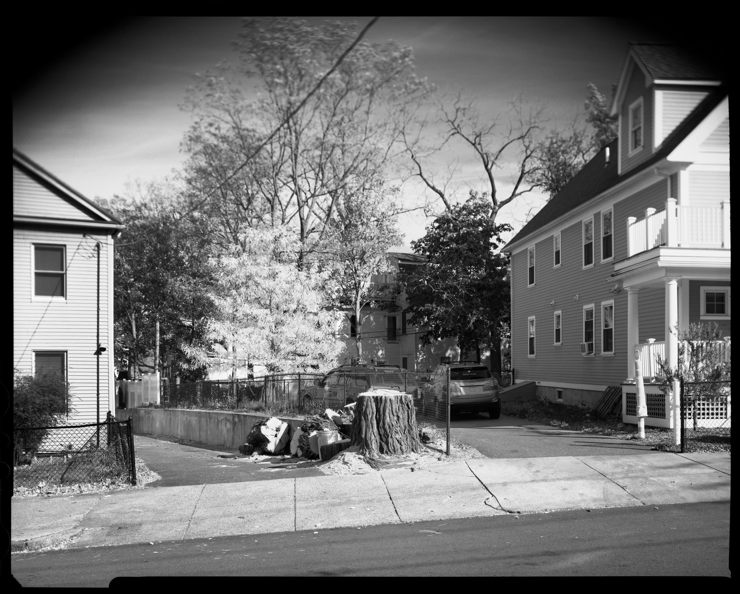 85 - 89 Cedar St, Fort Hill, Roxbury, MA, 2015