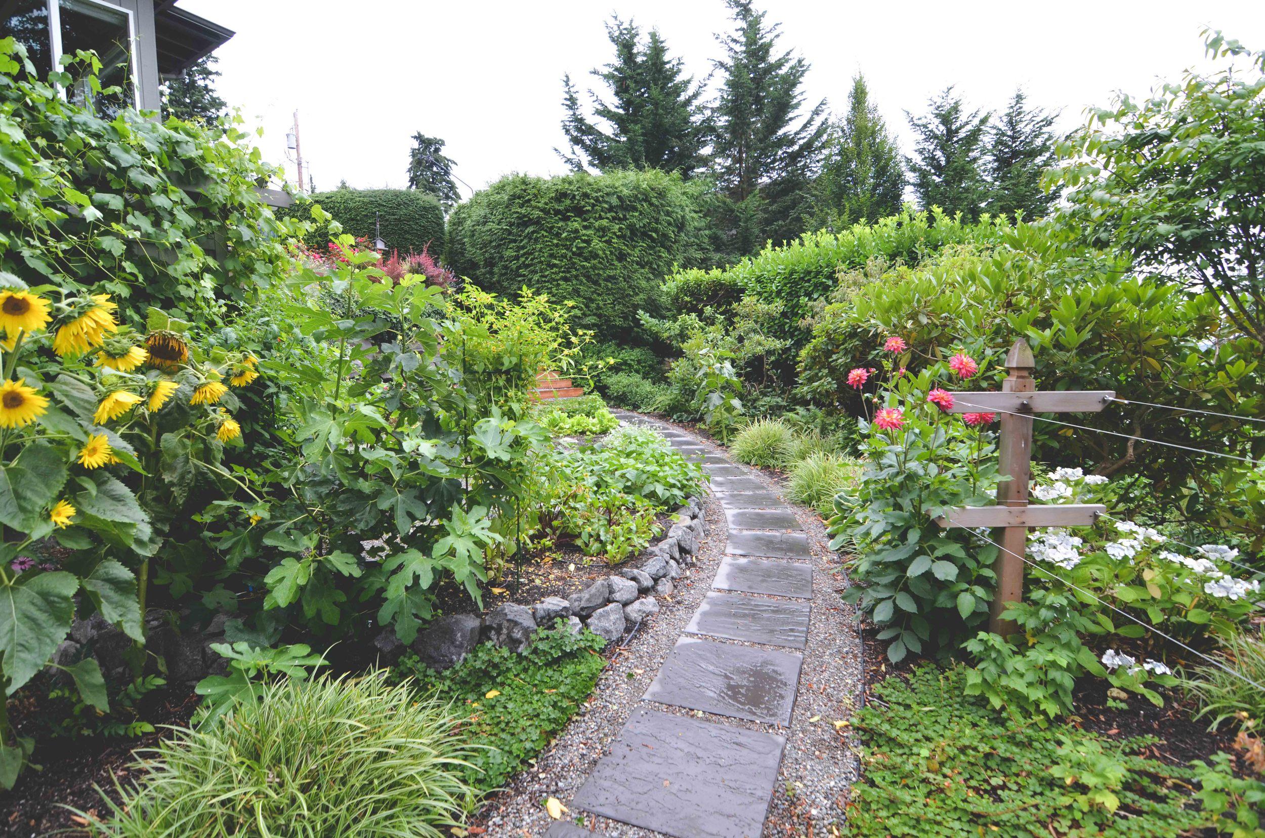 Mercer Island Vegetable Garden & Landscape Design_Seattle Urban Farm Company
