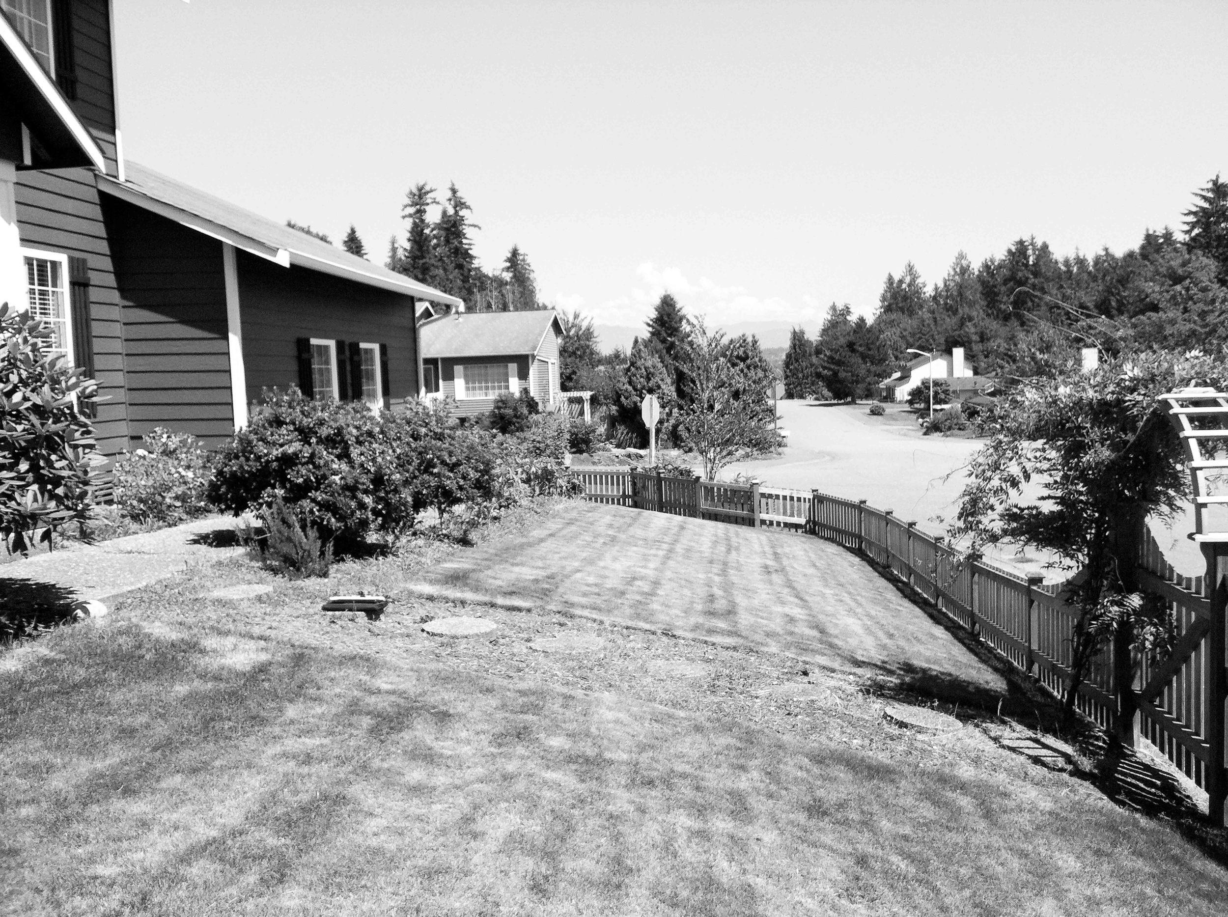 Suburban Front Yard Farm_Seattle Urban Farm Co. Design/Build_before