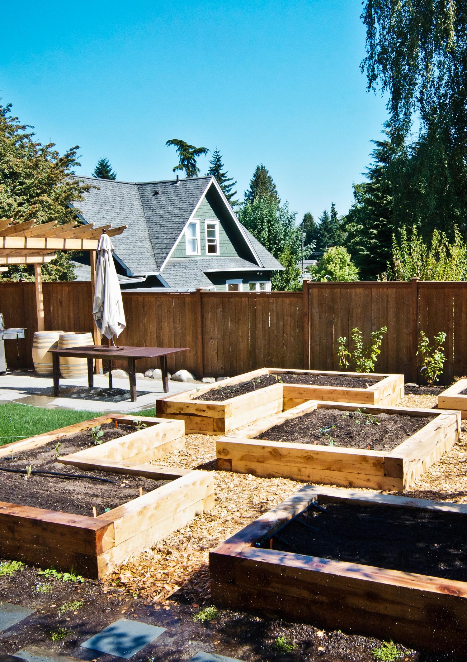 South Seattle Edible Landscape_Seattle Urban Farm Company_Raised Beds.jpg