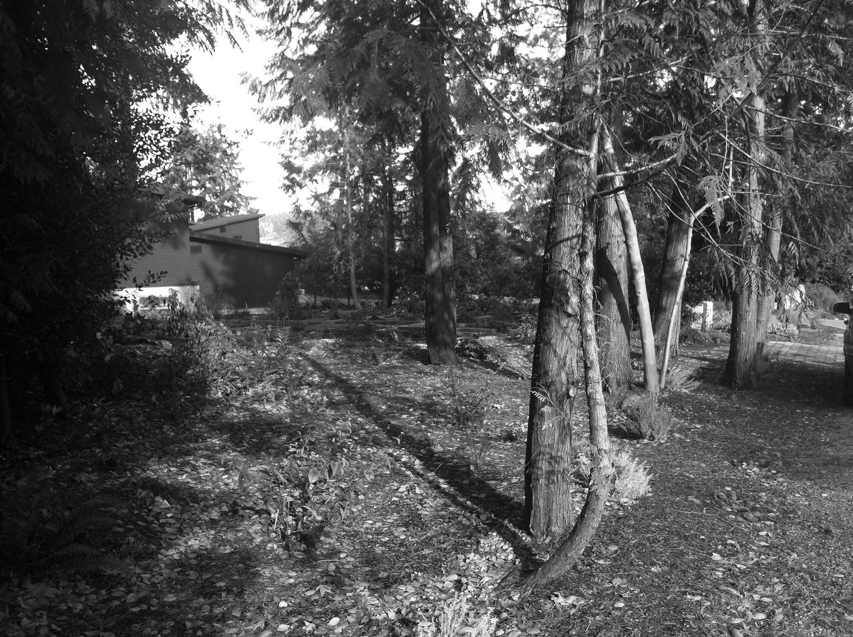 Landscape Before 2.jpg