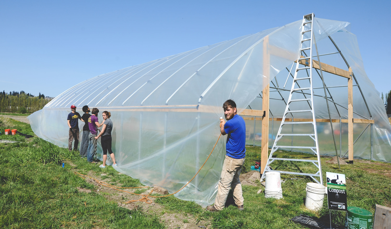New Greenhouse at Seattle Urban Farm Co's Urban Fringe Farm _Restaurant Farm