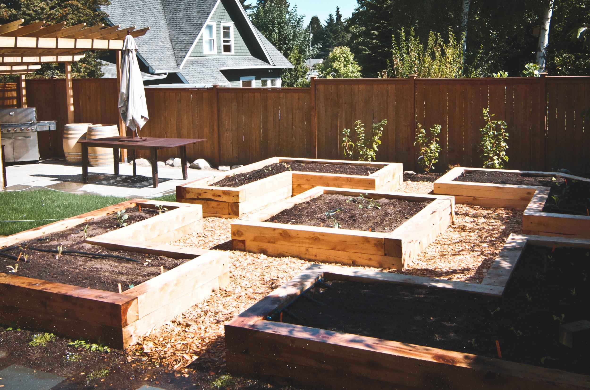 Raised Beds Juniper Timbers.jpg