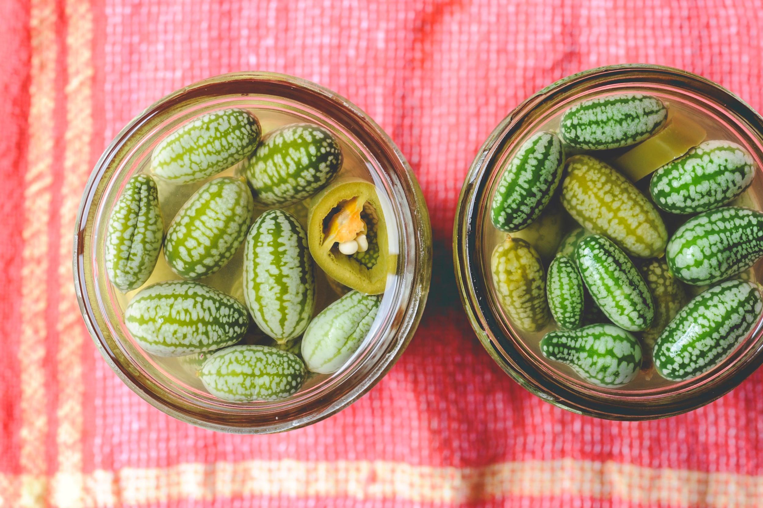 Mexican Sour Gherkin Pickles_Seattle Urban Farm Co.